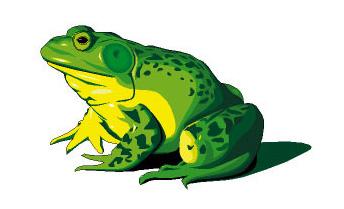 froglogofrog