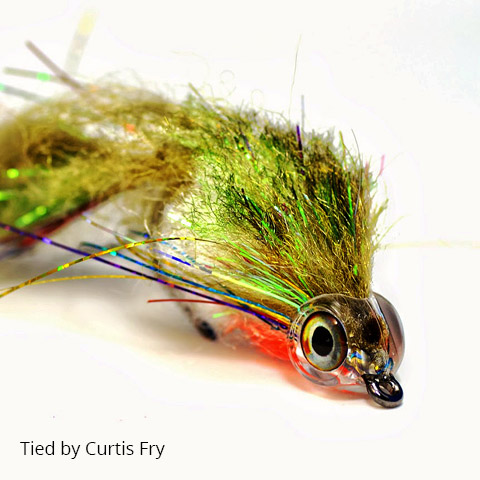fish-skull-fish-mask-curtis-fry-fly